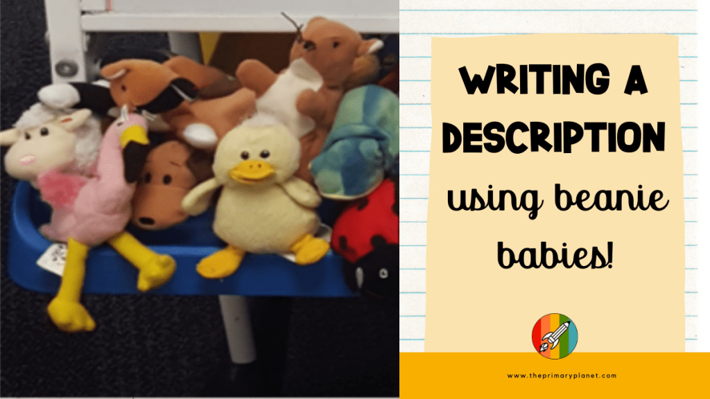 writing a description with beanie babies